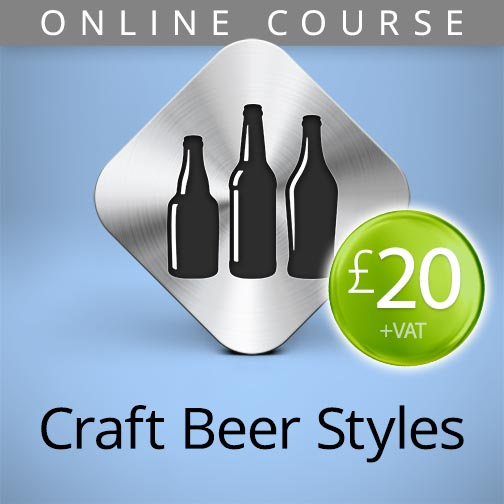 craft beer styles online course
